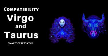 Virgo-and-Taurus-Compatibility