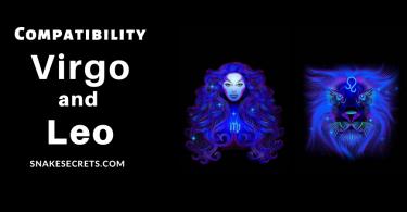 Leo Virgo Compatibility