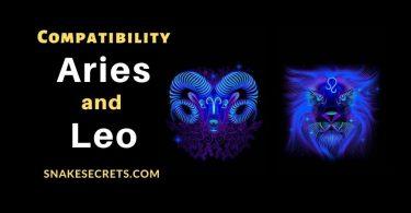 Aries Leo compatibility