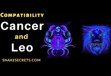 Cancer Leo Compatibility