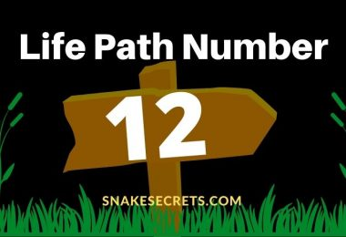 Life Path Number 12