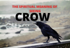 the spiritual meaning of seeing crow