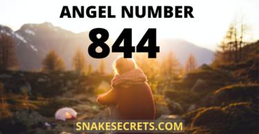 ANGEL NUMBER 844