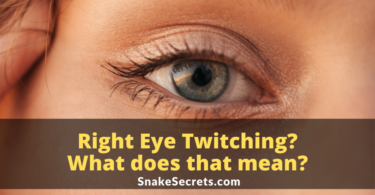 Right Eye Twitching Spiritual Meaning For Female