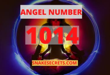ANGEL NUMBER 1014