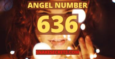 ANGEL NUMBER 636