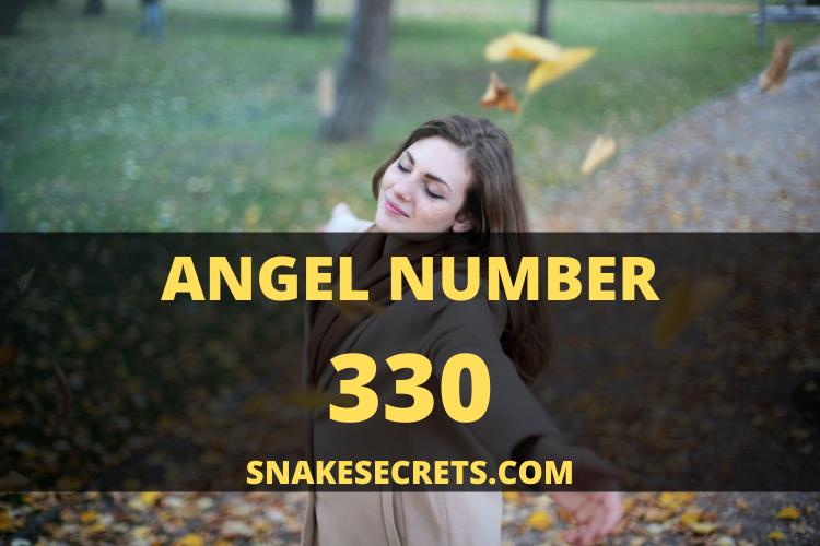 Angel number 330